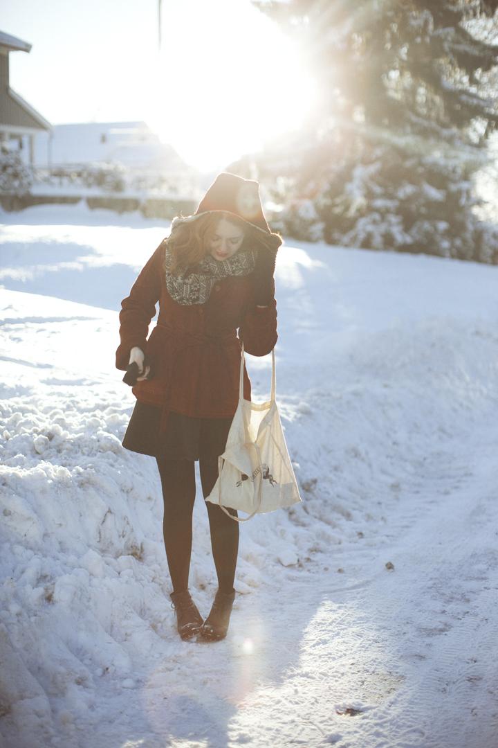 vinteridyll17